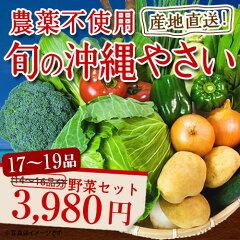 野菜セット|カフェやホテルでも絶賛の新鮮野菜詰め合わせて産地直送します|野菜セット|野菜|旬...