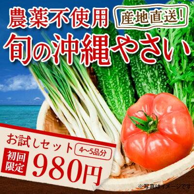 野菜セット|沖縄の恵みをたっぷりうけて育った島野菜を産地直送でお届け|野菜セット|野菜|宅配|...