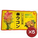 【送料無料】比嘉製茶 春ウコン粉(袋入) 100g 5袋セットクルクミン・マグネシウム[健康食品>サプリメント>ウコン]
