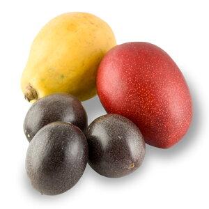 南の島のおいしいフルーツを贅沢に味わい尽くせる贅沢なフルーツ詰め合わせ!お中元・贈り物・...