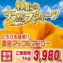 南国沖縄からの贈り物|沖縄産マンゴーをご家庭用に格安料金でご用意いたしました。2kg以上で送...