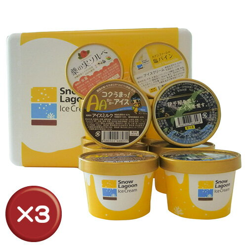 Snow Lagoon Ice Cream OKINAWAバラエティパック12個入り【アイスクリーム】 3箱セット アイスクリーム ジェラート 贈り物[食べ物>スイーツ・ジャム>アイスクリーム] お歳暮 御歳暮 おせいぼ