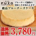 【送料込】 絶品ブルーチーズのチーズケーキ 沖縄土産 ギフト 贈り物[食べ物>スイーツ・ジャム>ケーキ] その1