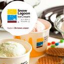 【送料無料】Snow Lagoon Ice Cream OKINAWAバラエティパック6個入り【アイ...