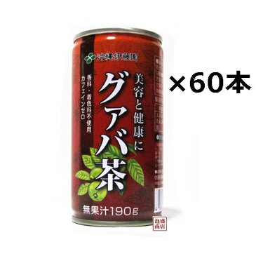 【グァバ茶】沖縄伊藤園 190g缶×60本セット(2ケース)香料 着色料無添加 カフェインゼロ