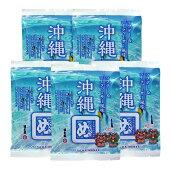 沖縄めんべい(ラフテー&シークヮーサー風味)(2枚x2袋)×5袋
