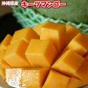 訳あり キーツマンゴー 約1kg ☆ 送料無料 ☆ 発送8月中旬〜9月中旬 流通量が少なく「幻のマンゴー」と呼ばれる。国産 沖縄県産 果物 マンゴー トロピカルフルーツセット