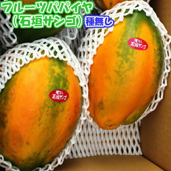 フルーツ・果物, パパイヤ  2kg2 82