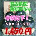 夏野菜 サラダ