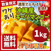 キーツマンゴー マンゴー トロピカル フルーツ