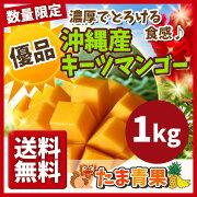 キーツマンゴー マンゴー トロピカル フルーツ プレゼント
