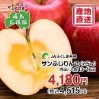 【被災地復興応援企画】福島のりんご「サンふじりんご」約5kg(13〜16玉)【福島県産】【送料無料】12月上旬〜12月中旬頃の発送になります。【りんご サンふじりんご 福島 果物】