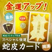 金運UP:開運:風水蛇皮カード