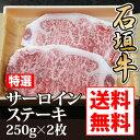 石垣牛特選サーロインステーキ2枚組250g×2枚【送料無料】...