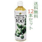 【送料無料】 JAおきなわシークヮーサー100 沖縄県産100%原液500ml×12本セット。青切りシークワーサー シークワーサージュース