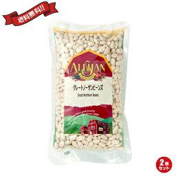 豆 インゲン インゲン豆 アリサン グレートノーザンビーンズ 500g 2袋セット