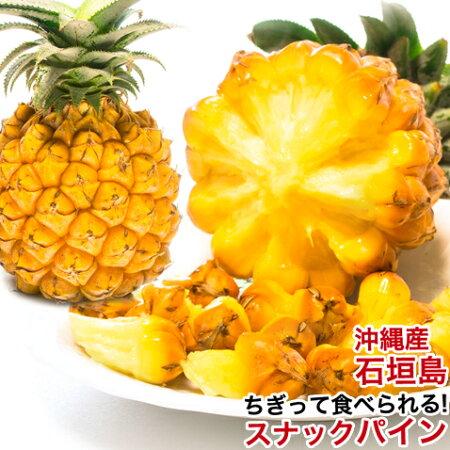 山将『沖縄産スナックパイン』