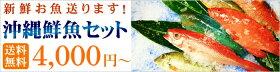 沖縄鮮魚セット