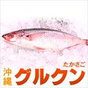 グルクン(タカサゴ)約1kg(3〜4匹)05P19Dec15