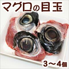 コラーゲン豊富!DHAもたっぷりです。マグロの目玉 (3〜4個)05P13Jun14
