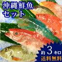 どんな魚が届くかな?【送料無料】 おまかせ沖縄鮮魚セット4kg(2~3種類) 【smtb-ms】