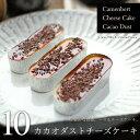 カカオダストチーズケーキ 10個 (カマンベールチーズケーキ・10個、トッピング・5個)濃厚 ダブルトッピング チョコレート スイーツ ギフト 送料無料 内祝い 出産 結婚 お祝い お返し お礼 誕生
