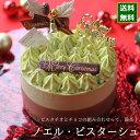クリスマスケーキ 予約 2021 ノエル・ピスターシュ 12cm (4号 サイズ) (目安:2人、3人、4人分) クリス...