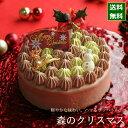 クリスマスケーキ 予約 2020 チョコレート ケーキ 森の