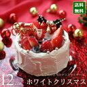 クリスマスケーキ 予約 2021 ホワイトクリスマス 12cm (4号 サイズ) (目安:2人、3人、4人分) クリスマ...