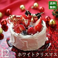 クリスマスケーキ 予約 2021 ホワイトクリスマス 12cm (4号 サイズ) (目安:2人、3人、4人分) クリスマス パーティー ケーキ いちご ショートケーキ 数量 限定 飾り キャラクター かわいい おしゃれ 送料無料 カトルフィユ 広島