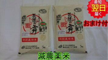 特別栽培米千葉県匝瑳の舞プレミアム