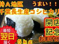千葉県長生産コシヒカリ