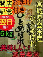 特別栽培米宮城登米産ひとめぼれ