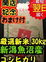【26年産新米】新潟県魚沼産コシヒカリ30kg送料無料※北海道・沖縄一部離島は別途送料500円が掛かります。