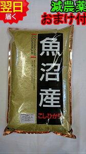 【新米】新潟県魚沼産コシヒカリ5kg送料無料※北海道・沖縄一部離島は別途送料500円が掛かります。