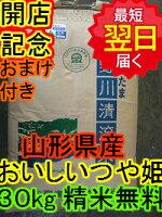 【26年産新米】山形県長井産つや姫30kg送料無料※北海道・沖縄一部離島は別途送料500円が掛かります。