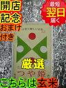 【30年産 新米】山形県産 地域厳選 つや姫★玄米5kg特別...