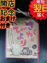 【29年産】佐賀県白石地区産さがびより☆白米5kg送料無料※...