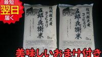 五郎兵衛米10