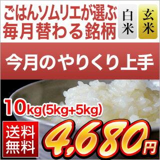【白米・玄米セット】島根県産 きぬむすめ 10kg(5kg×2袋)【送料無料・令和元...