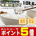 29年 米 10kg 送料無料白米 『米屋仕立て』 10kg【5kgX...