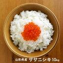 ササニシキ 10kg 山形 新米 令和元年産 無洗米/白米/玄米 10キロ 米 おこめ コメ 【一部地域は別途送料追加】