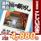 【楽ギフ_のし】【米10kg/おいしいお米】新潟産こしいぶき(5kg×2袋)