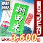 【楽ギフ_のし】【米5kg】新潟こしひかり棚田米コシヒカリおいしいお米送料無料5キロ