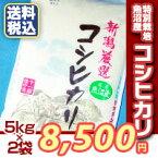 【楽ギフ_のし】【米10kg】送料無料魚沼産コシヒカリ(5kg×2袋)【特別栽培】【新潟こしひかり/おいしいお米/10キロ】