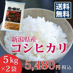 【楽ギフ_のし】【お米】新潟県産コシヒカリ10kg(5kg×2袋)送料無料おいしいお米こしひかり10キロ