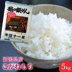 【楽ギフ_のし】【おいしいお米】新潟産こがねもち5kg