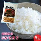 【楽ギフ_のし】【米】新潟県産こしひかり(コシヒカリ)5kg送料無料おいしいお米