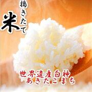 24年秋田県産あきたこまち玄米10kg