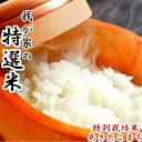 令和元年産 玄米 20 kg 送料無料 秋田県産 減農薬 特別栽培米 あきたこまち 米(10kg×2袋)一等米 お米 お祝い 御贈答